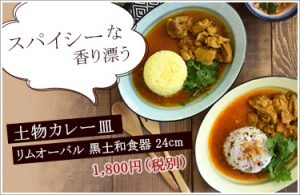 se-curryplate_sp